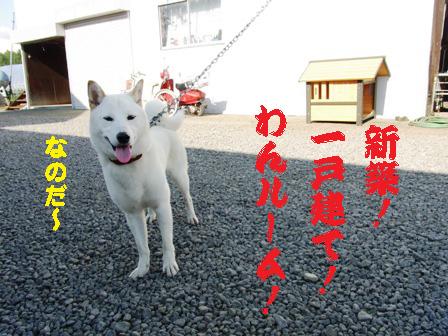 100420_04.jpg