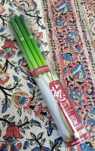 ネギ鉛筆2