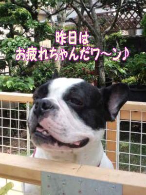 11_6_7_3.jpg