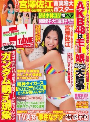 EN-TAME-2010-No-11.jpg
