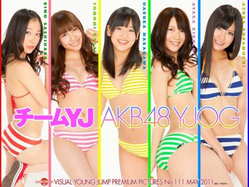 VYJ-111-Team-YJ.jpg