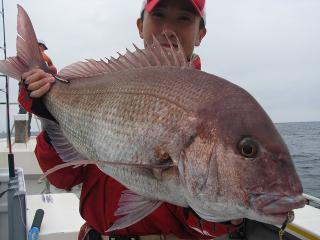 200906真鯛