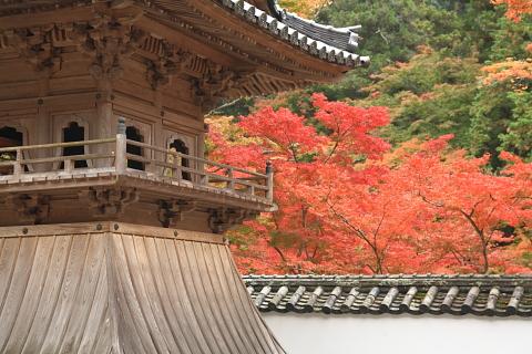 仏通寺2010-11