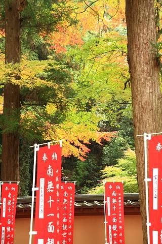 仏通寺2010-2