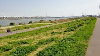 荒川(河口まで2km)