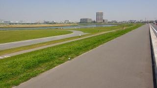 多摩川(六郷土手付近5)