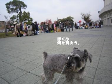 IMG_3021.jpg