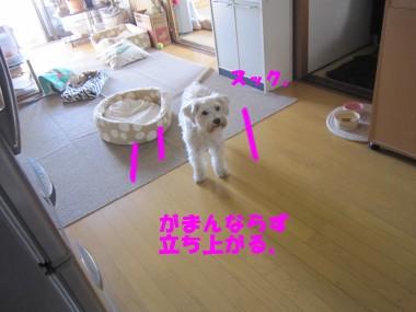 IMG_3210.jpg