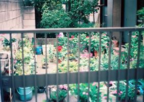 f900513019.jpg