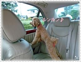 20110918車内ジョナ立ち