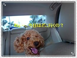 20110918車内ジョナ2