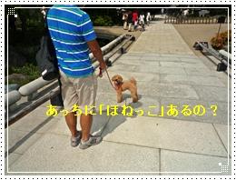 20110918勝尾寺ジョナ3