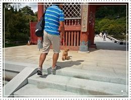 20110918勝尾寺ジョナ2