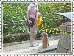 20110918勝尾寺と鐘とジョナ