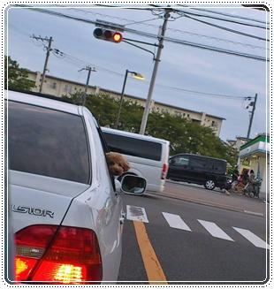 車からジョナ2