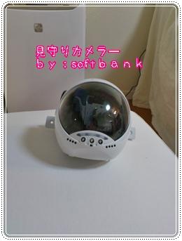 DSC_0416.jpg