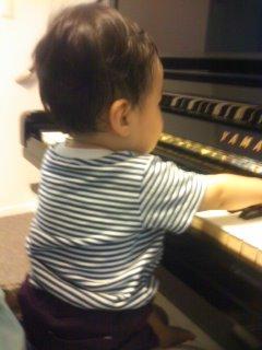 toro-piano.jpg
