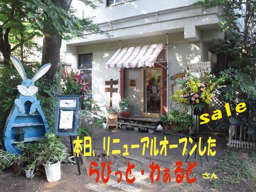 DSC_0003_20110702204929.jpg