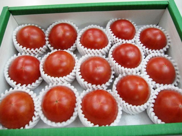 100122フルーツトマト 003