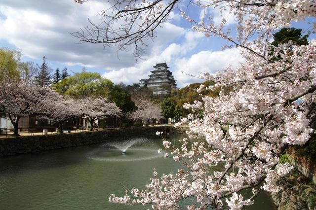 去年の姫路城