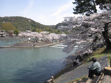 20100404奈良 033