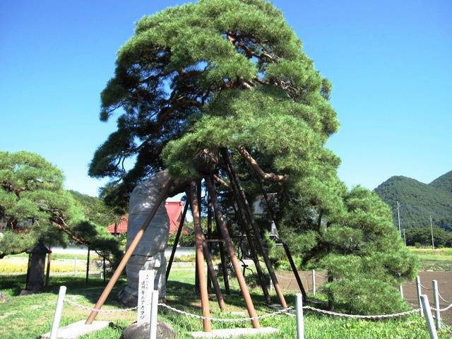 20100927八ヶ岳 031