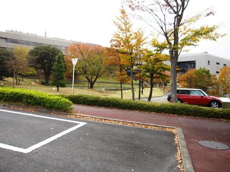 20101118-21tokyo 007