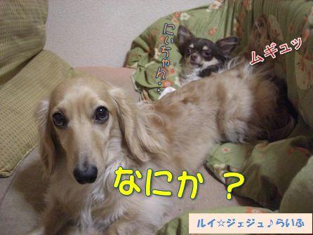 0131-4_20100130234915.jpg
