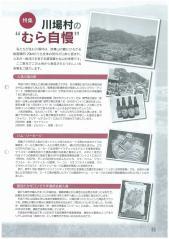 scan-4-2_convert_20130304091135.jpg