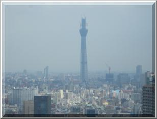 bf_U4.jpg