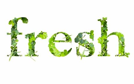 fresh_1_7.jpg