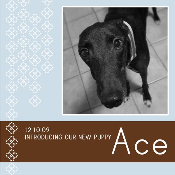Ace.2 copy