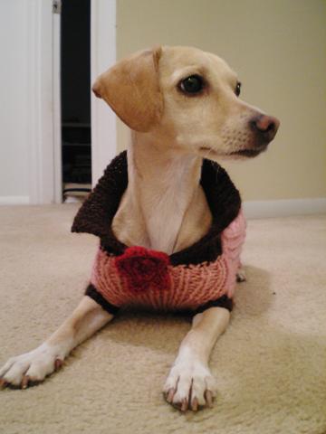 zoe-sweater1.jpg