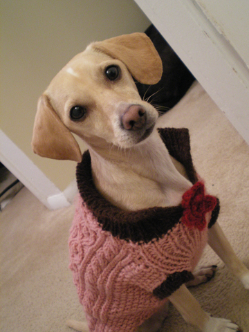 zoe-sweater2.jpg