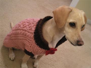 zoe-sweater3.jpg