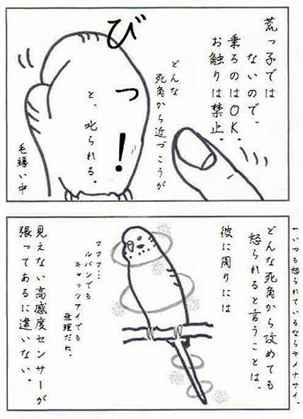 一刀両断+α