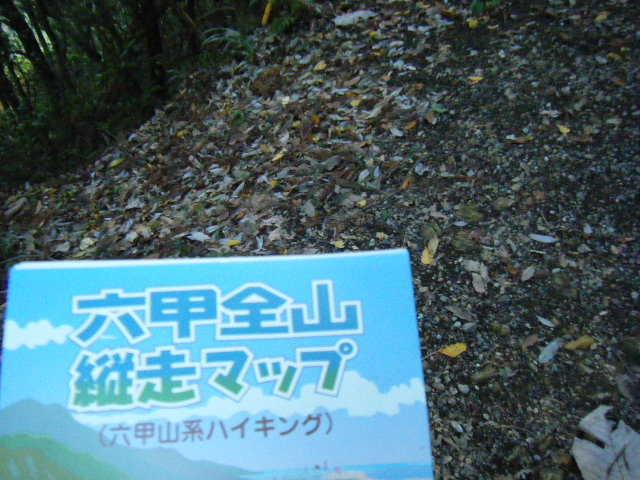 20091103_DSCF_0014.jpg