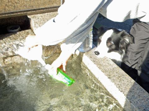 美味しい水だね
