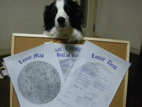 月の土地の権利書です