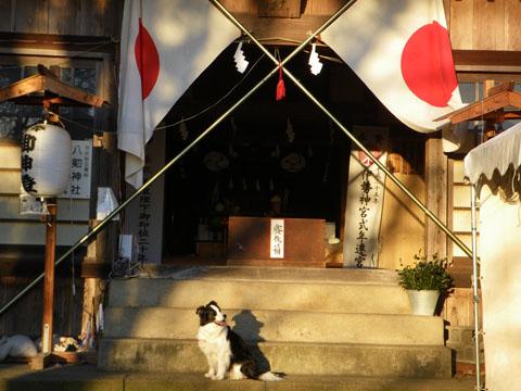神社に参拝