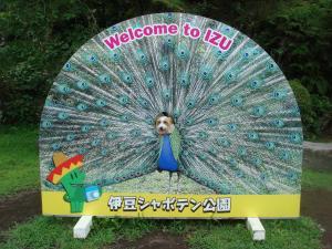 DSC02067_convert_20100816110711.jpg