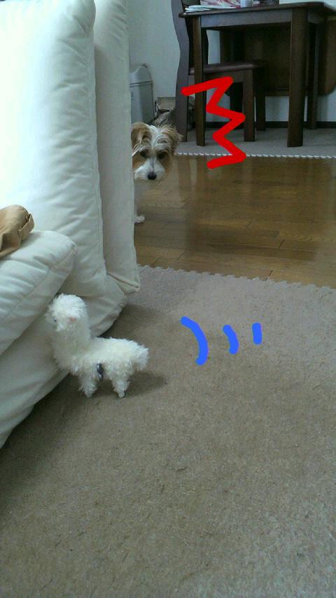 moblog_e1c91a15.jpg