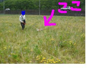 snap_kaelion_201050153922.jpg
