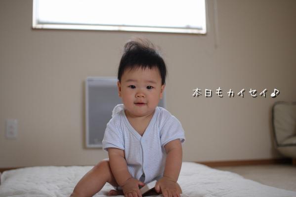 z-IMG_8707.jpg
