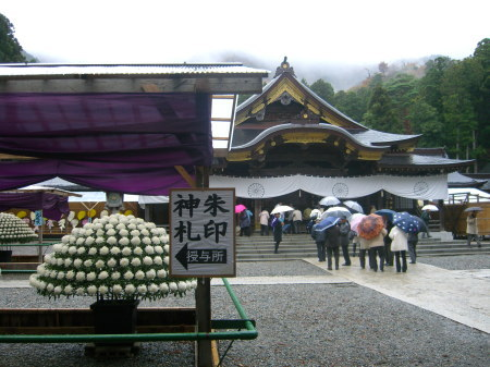 弥彦神社菊祭り_200911