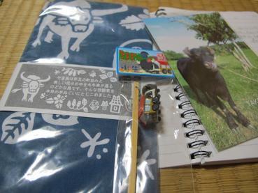 竹富島、水牛車のお土産