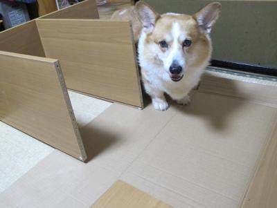 エドんと組み立て家具