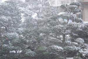 2010雪1