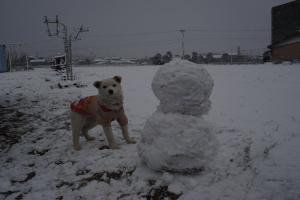 2010雪4
