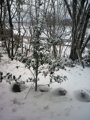 雪景色30